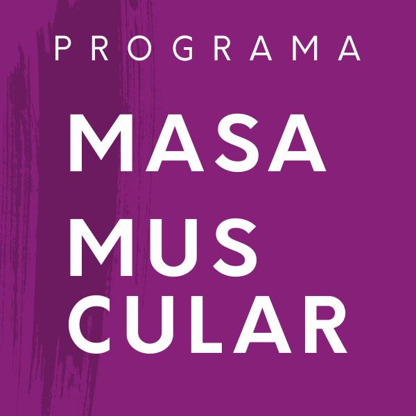 Programa masa muscular